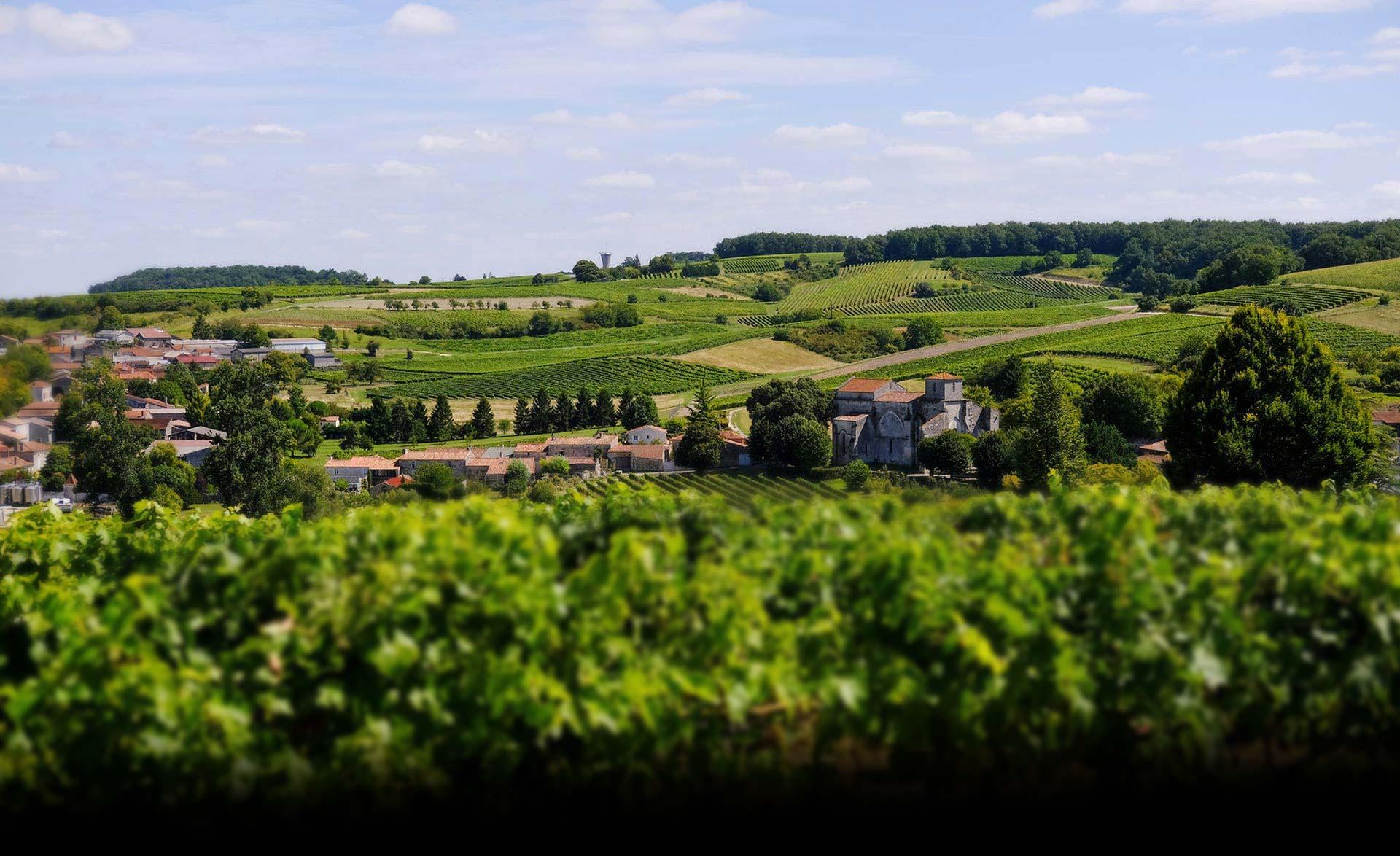 cognac-Paul-Giraud-bouteville